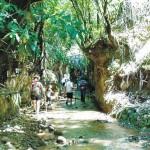 ΑΡΧΑΙΑ ΟΛΥΜΠΙΑ :Βοθρολύματα σε φαράγγι Natura! (ΗΧΗΤΙΚΟ)