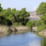ΟΙΚΙΠΑ: Απειλές κατά της ακεραιότητας του Εθνικού Πάρκου Κοτυχίου Στροφιλιάς