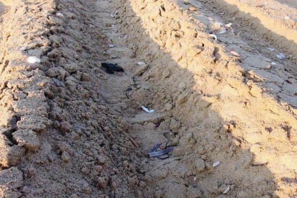 ΗΛΕΙΑ: Ασυνείδητοι ιδιοκτήτες οχημάτων 4Χ4 σκοτώνουν τις θαλάσσιες χελώνες στην ακτογραμμή του Εθνικού Πάρκου Κοτυχίου – Στροφυλιάς (φωτό)
